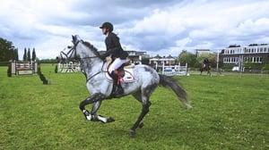 equestrian-horseback.jpeg