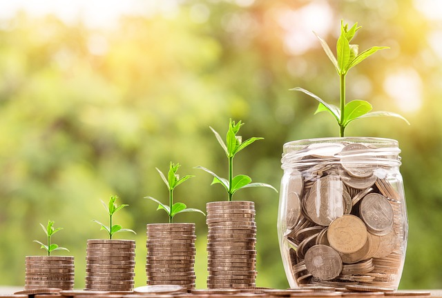 grow-your-money.jpg